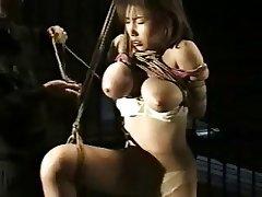 Big tits bondage tube